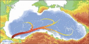 Pathways of Mediterranean plumes in the middepth layer of the Black Sea as inferred from ship and float data (white dots)