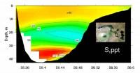 Современный вид Аральского моря из космоса