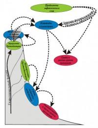 Схема трофических цепей нанобиоты на гидротермальном поле Лост Сити