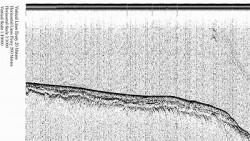 lab RNK ris20