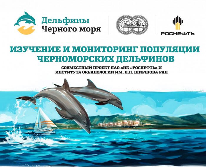 delphin 10082020